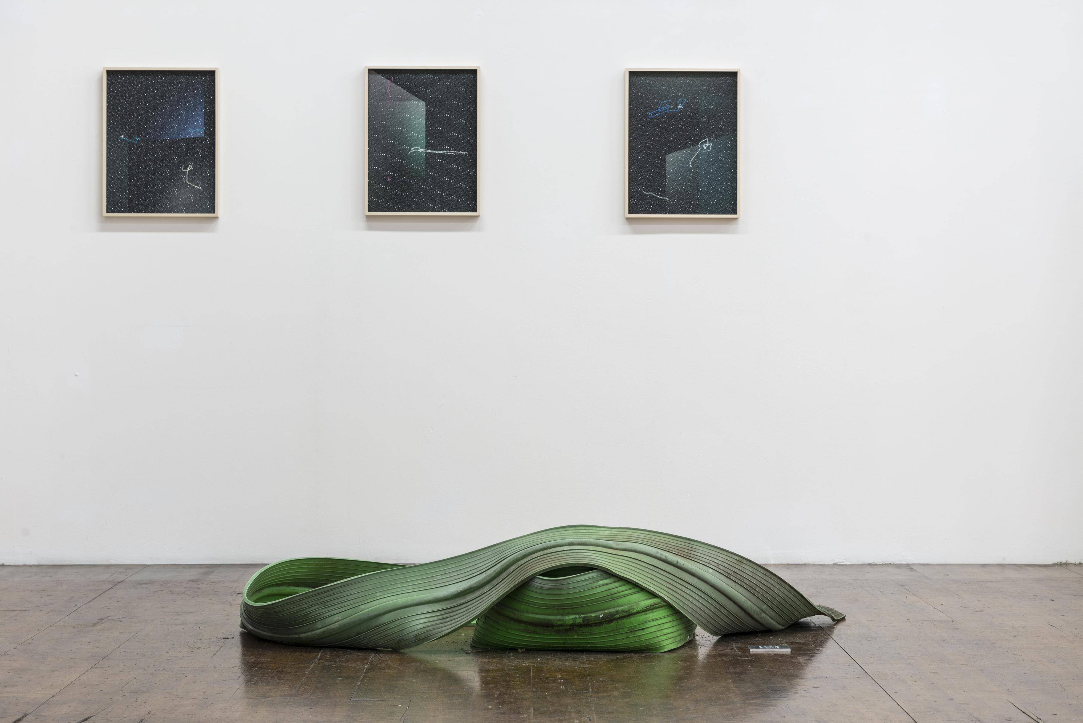 Daniel Hafner - Crazy Cat (exhibition view)