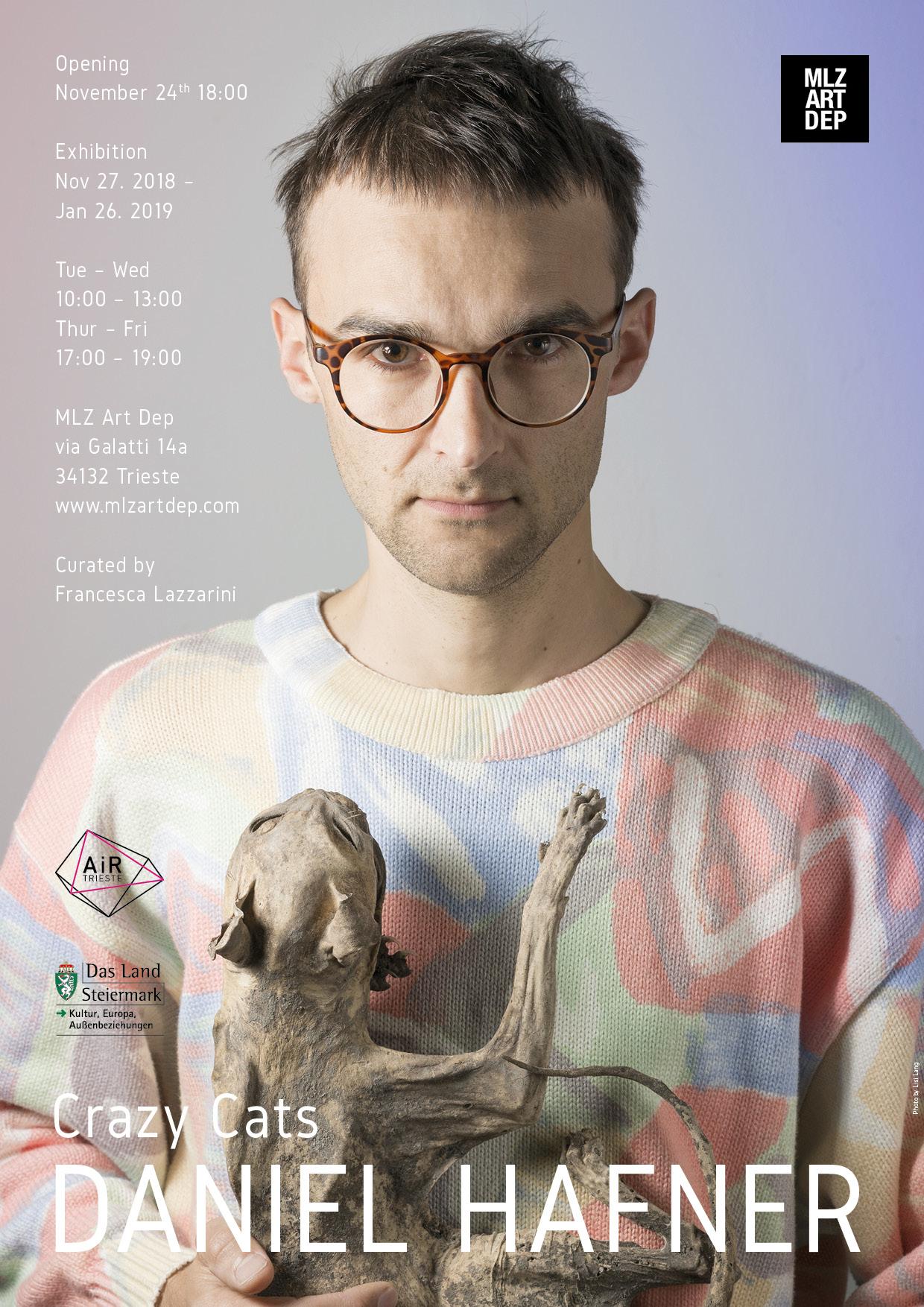 Daniel Hafner - Crazy Cat (poster)