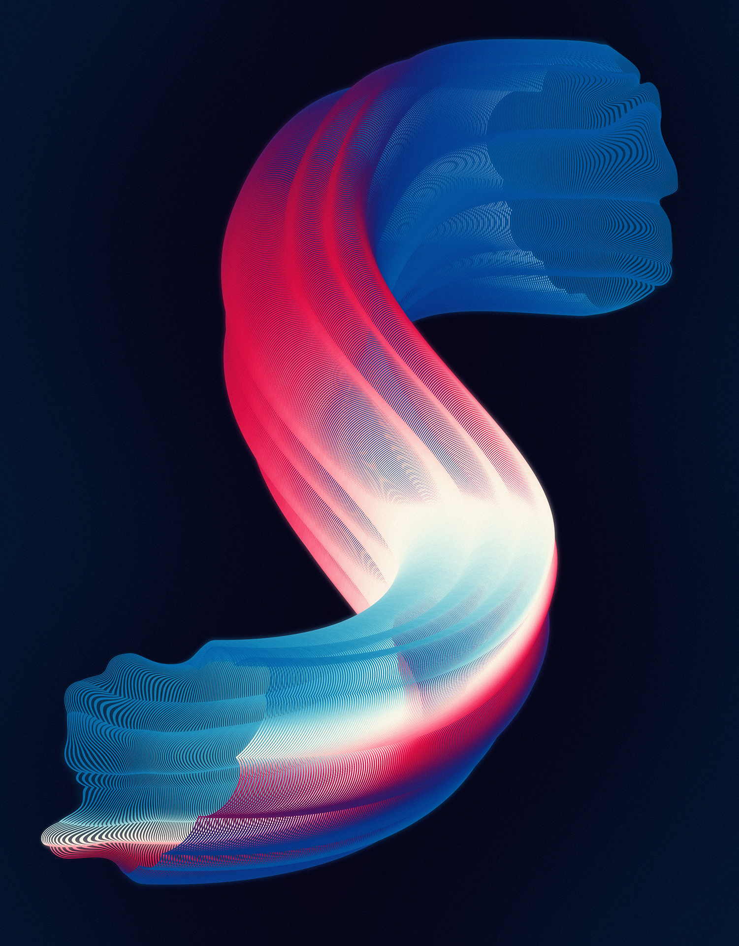 The Cool Couple, The Worm, 2018, stampa a getto d'inchiostro su carta baritata, cm 70 x 55