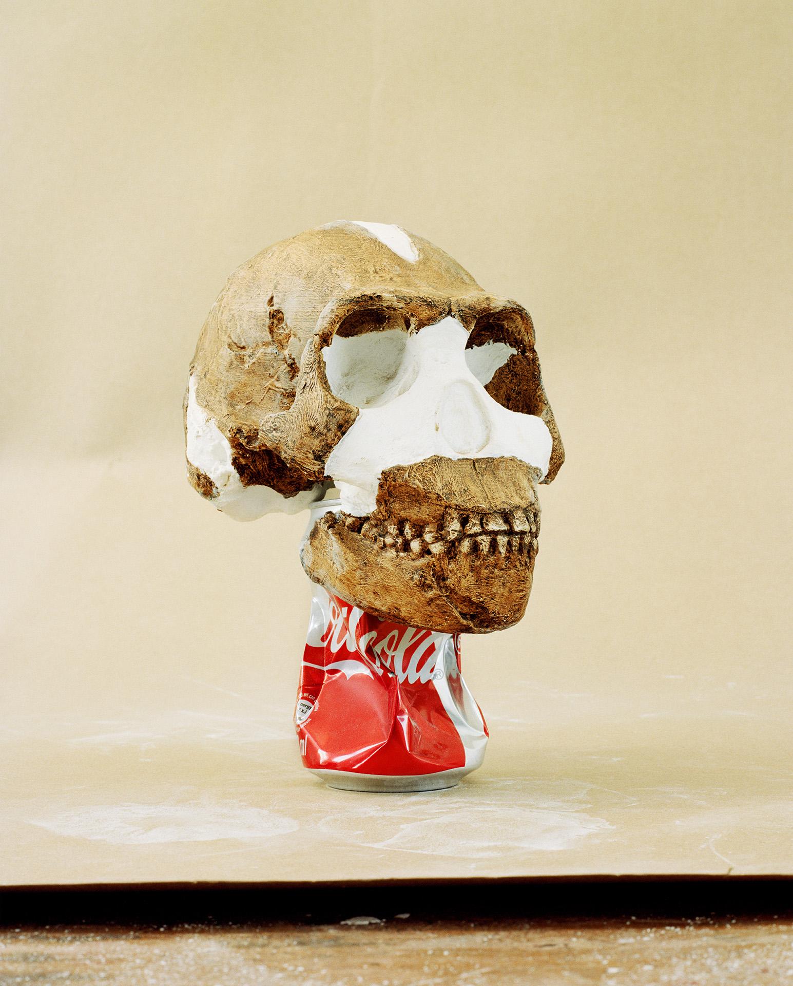 The Cool Couple, Skull - Time Travel Stuff, 2018, inkjet print on fine art paper, 70 x 55 cm