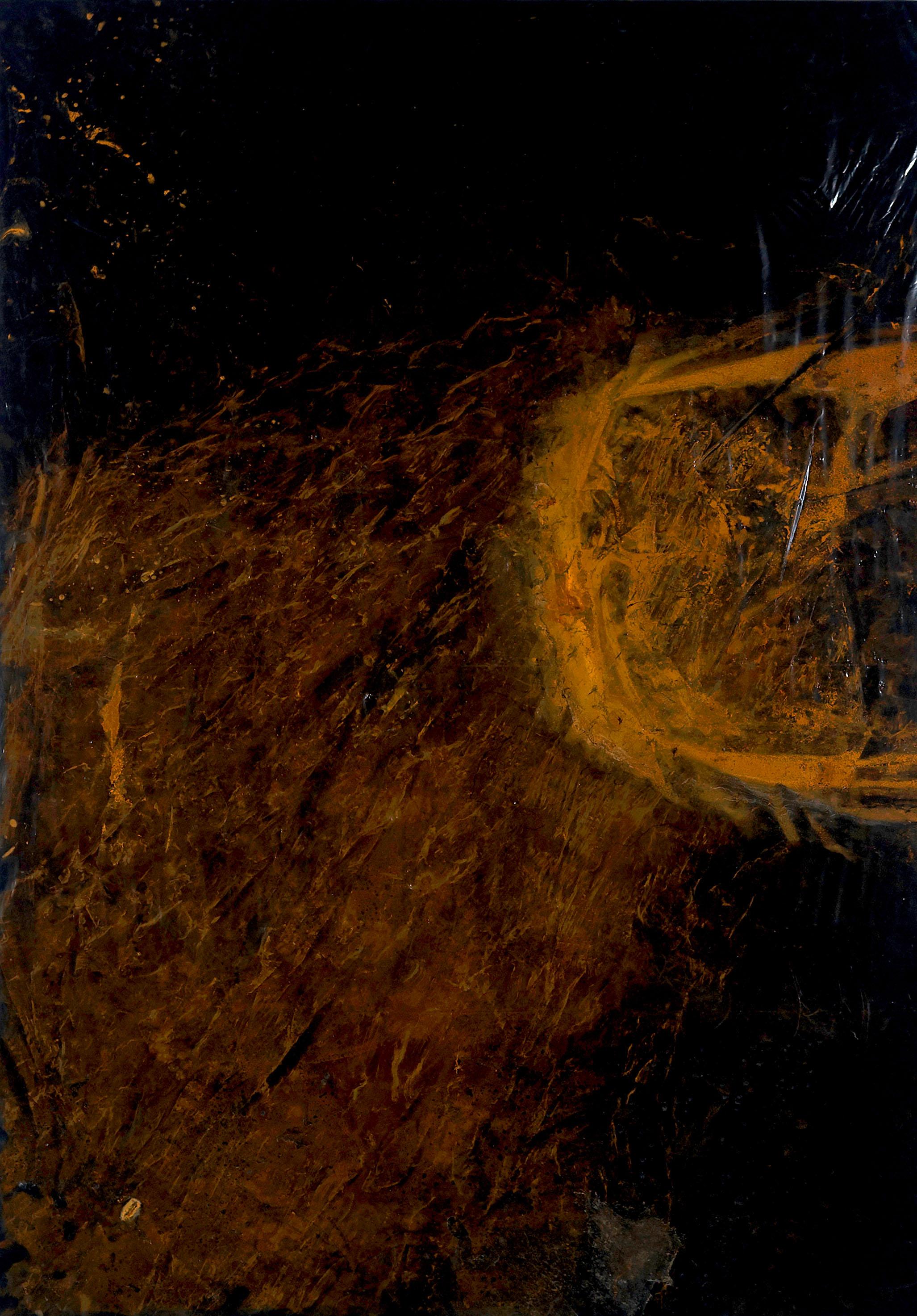 Valentina Palazzari, Senza titolo, 2016, ruggine su plastica,120 x 80cm